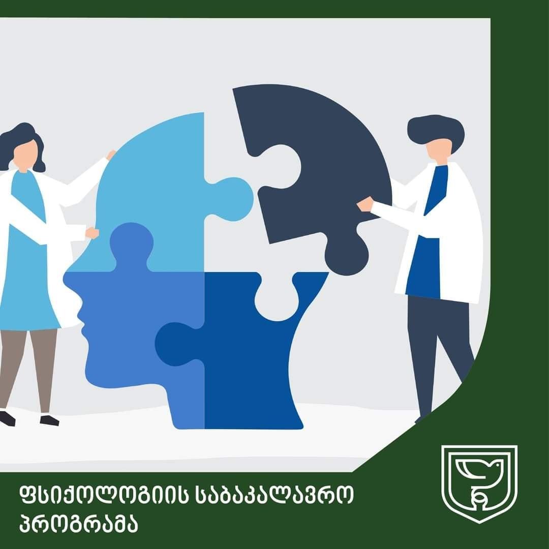 საბაუნის ფსიქოლოგიის საბაკალავრო პროგრამა